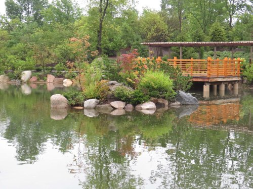 a viewing platform -  Japanese Garden in the Frederik Meijer Gardens & Sculpture Park