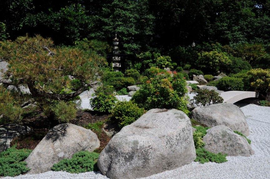 turtle island - Tenshin-en garden at MFA, Boston